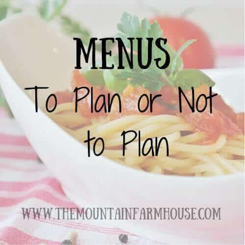 Menus To Plan or Not to Plan