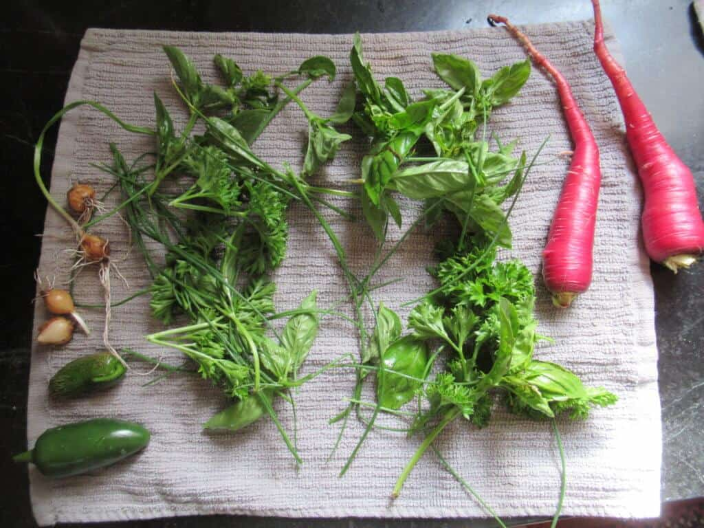 Carrots, peppers, and herbs