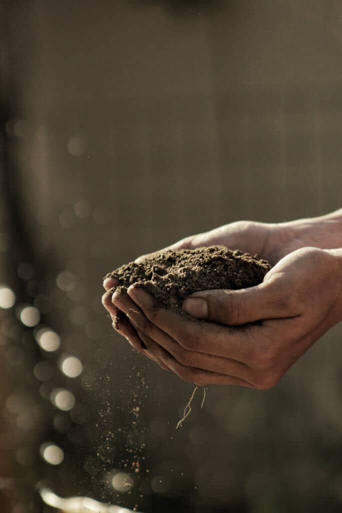 Handful of Earth Permaculture Ethics