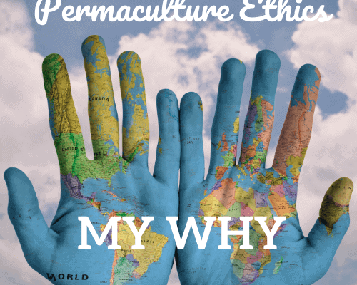 Palms of two hands with map of world in cloudy sky Permaculture Ethics My Why