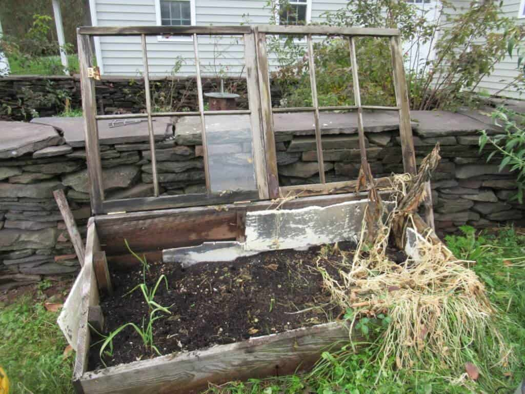 Partially cleaned out cold frame