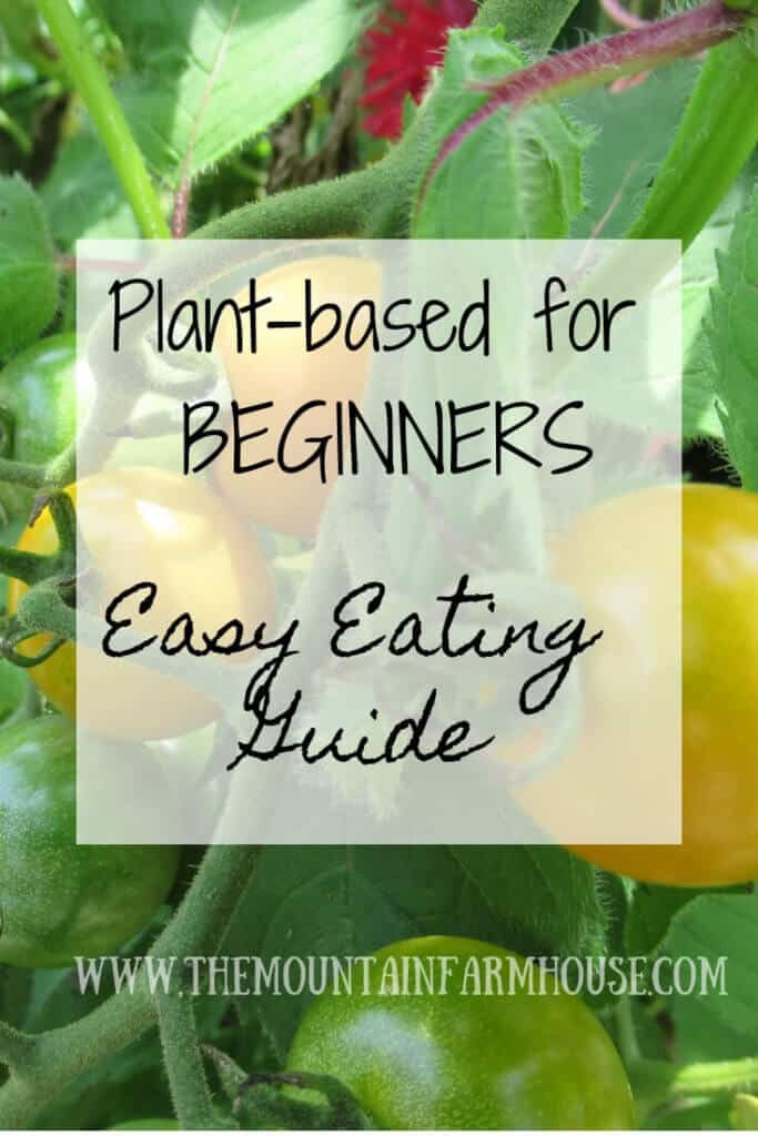 Plant based for Beginners Easy Eating Guide with tomato plants