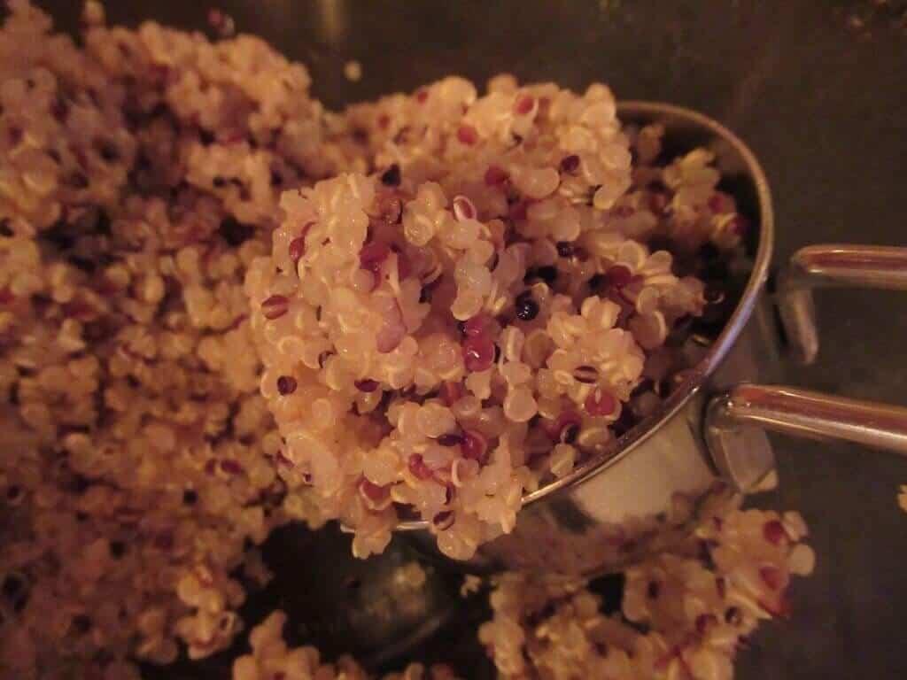 cooked_quinoa