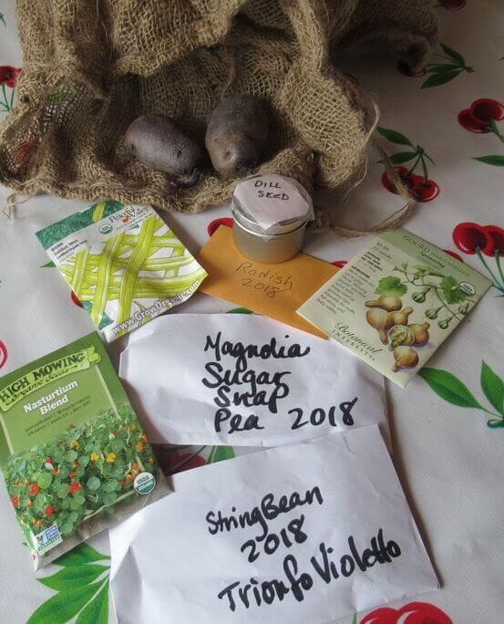 January Garden Tip Seed organizing