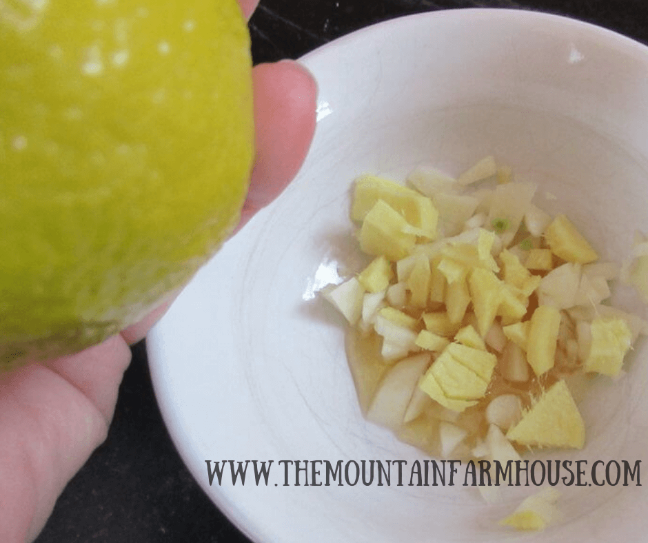 Lemon and bowl with chopped garlic, ginger, and agave nectar