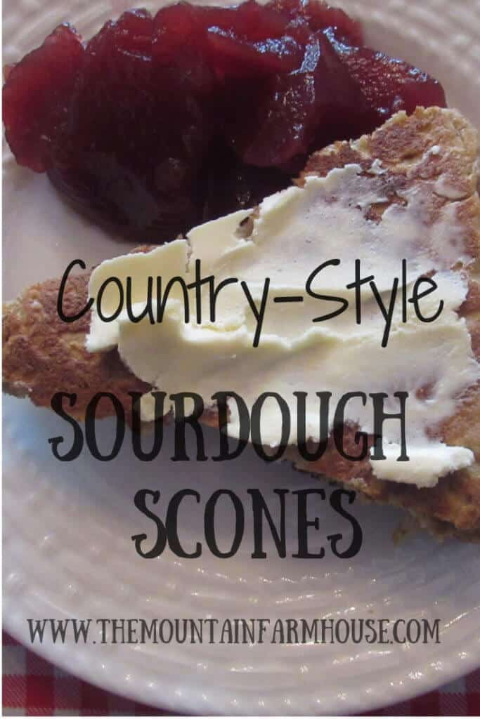 Country-style Sourdough Scones with vegan butter and jam