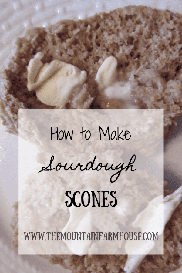 Sourdough Scones with Vegan Butter Pinterest How to Make