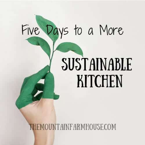 Five Days to a More Sustainable Kitchen