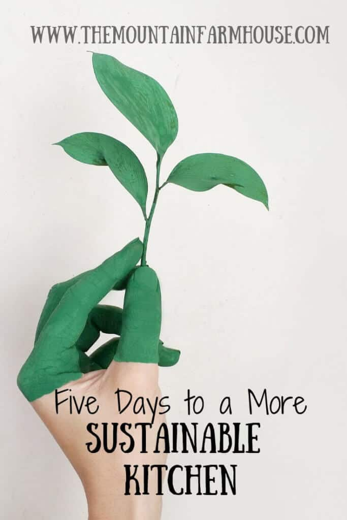 Leaf in green hand five days to a more sustainable kitchen