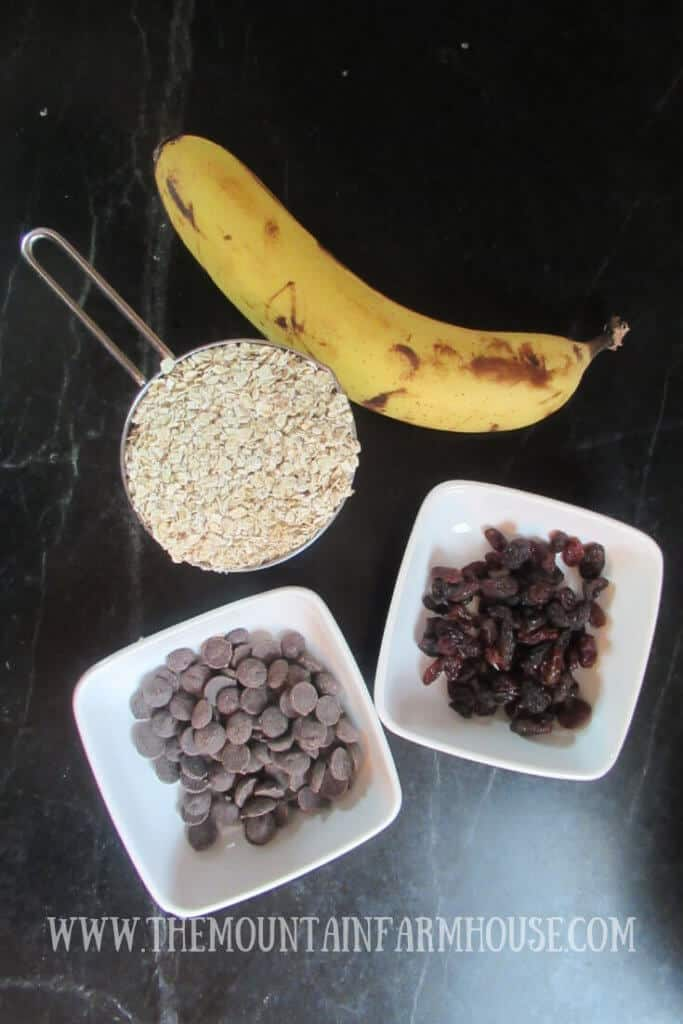 Banana, oatmeal, chocolate chips, raisins