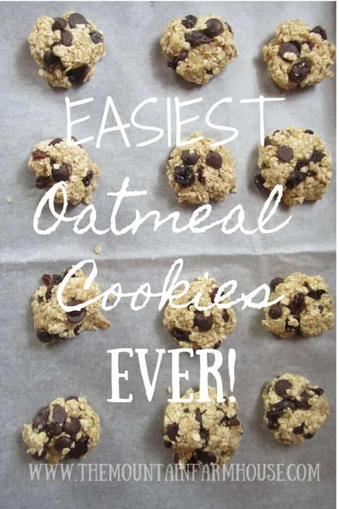 Easiest Oatmeal cookies ever