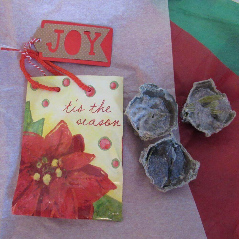 """Gift bag on tissue with """"Joy"""" tag and homemade quick easy fire starters"""