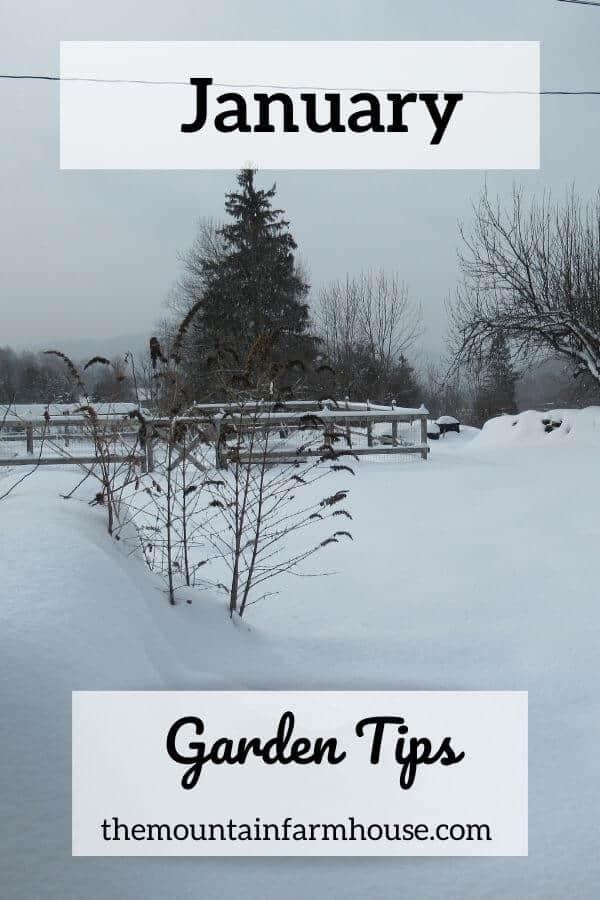 Pinterest January Garden Tips Snow covered garden