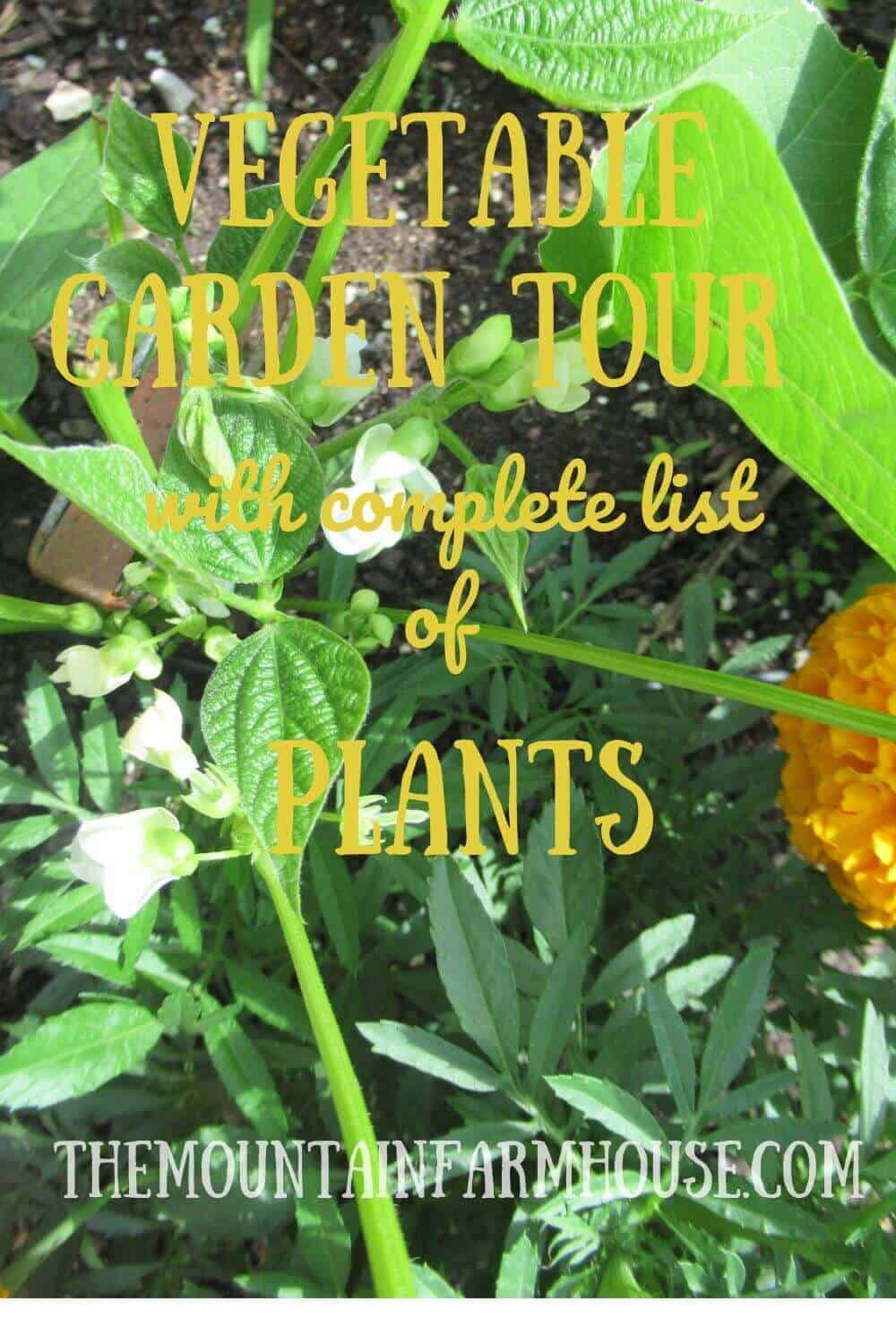 """Pin Picture of Bean Flowers and Marigolds """"Vegetable Garden Tour with complete list of plants"""""""