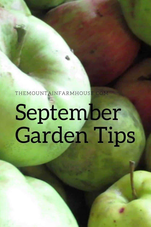 Pin September Garden Tips Apples