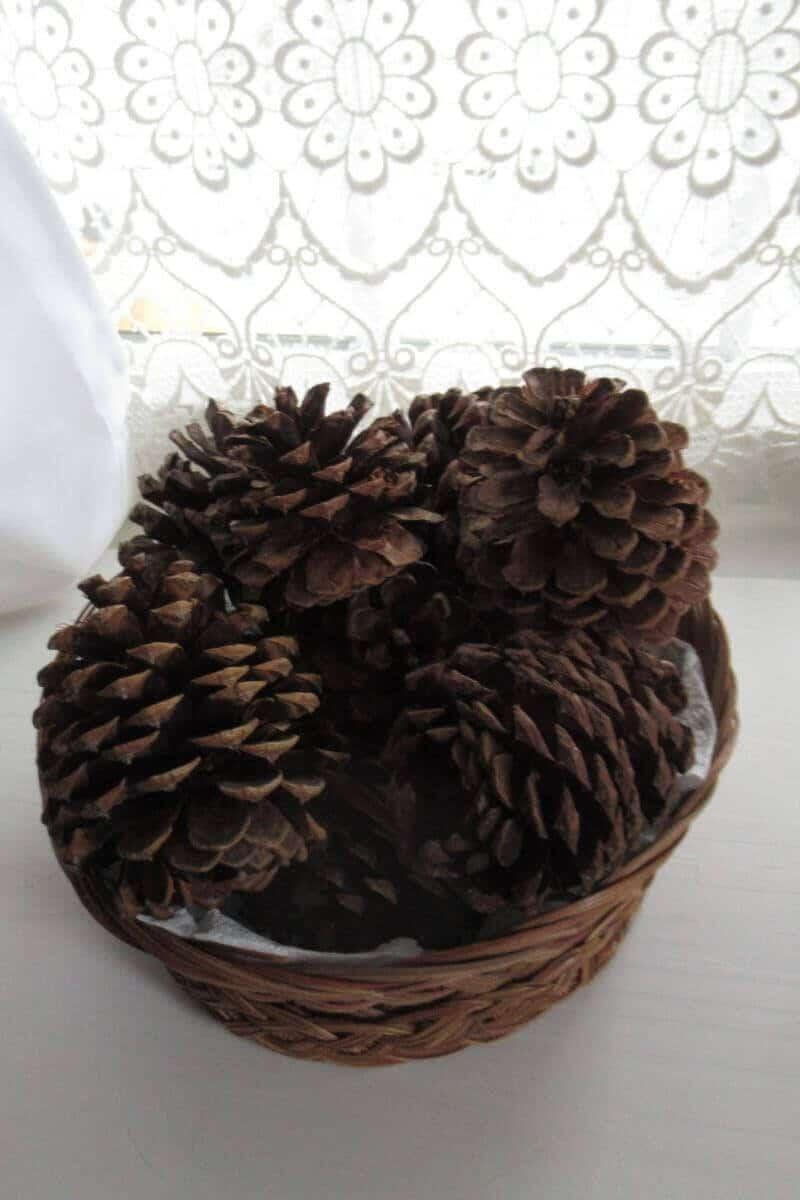 Basket of pinecones