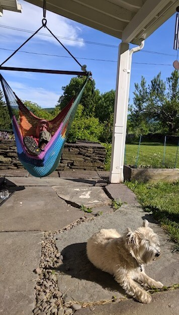 Person in hammock and dog on porch