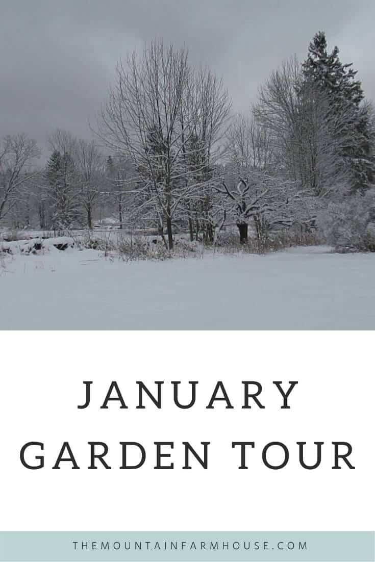 January Winter Garden Tour Pinterest Pin