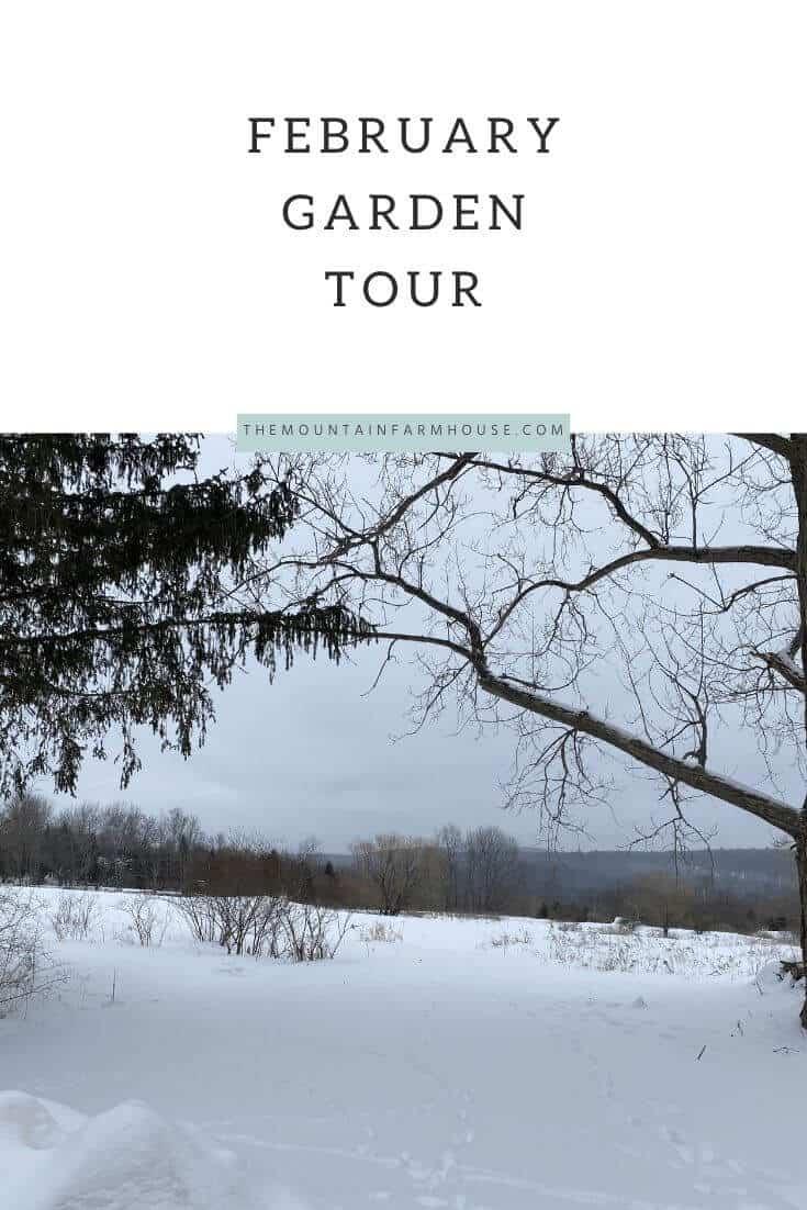 Pinterest pin winter snow trees